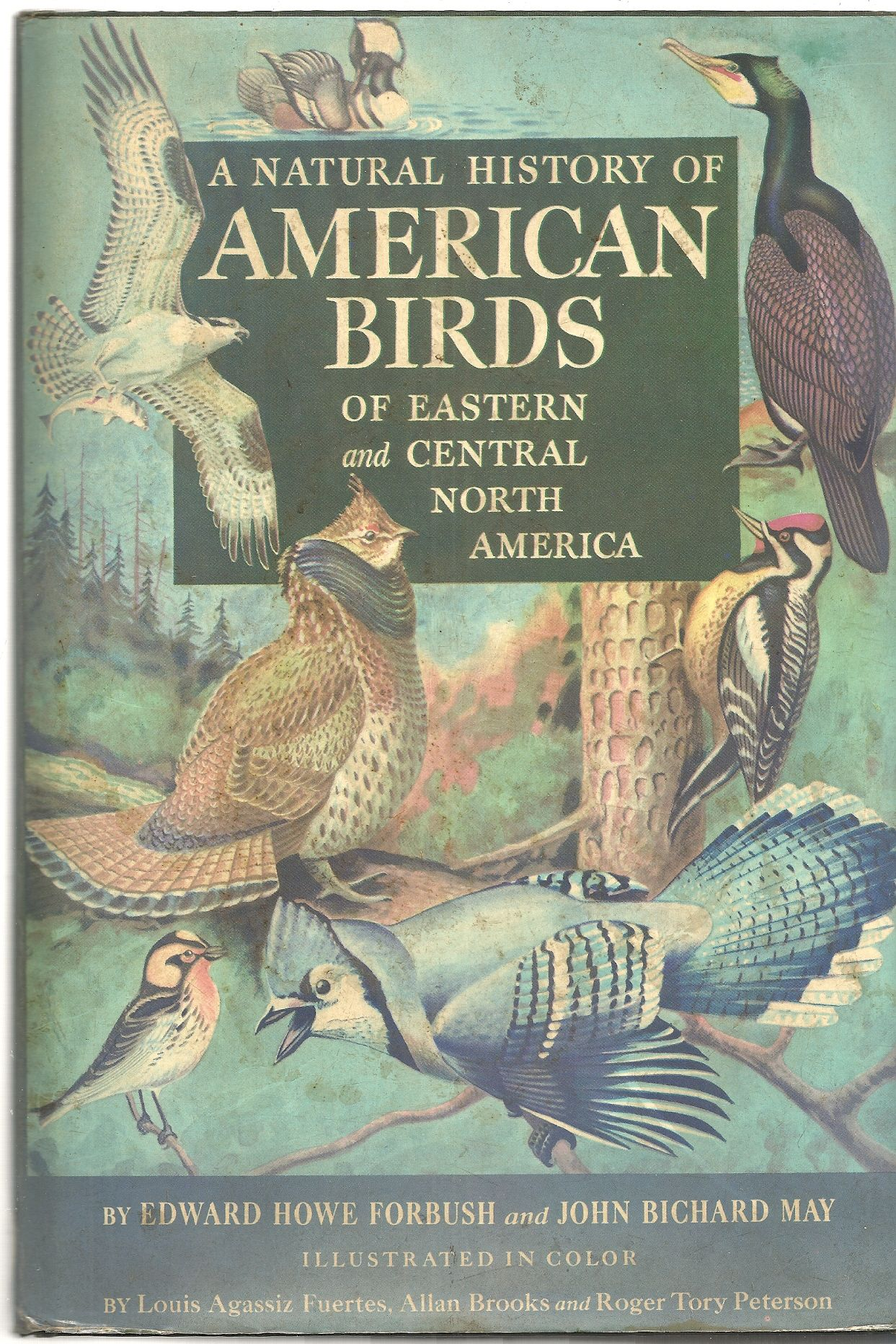 A Natural History of American Birds of Eastern and Central North America, Forbush Edward Howe, And May John Bichard