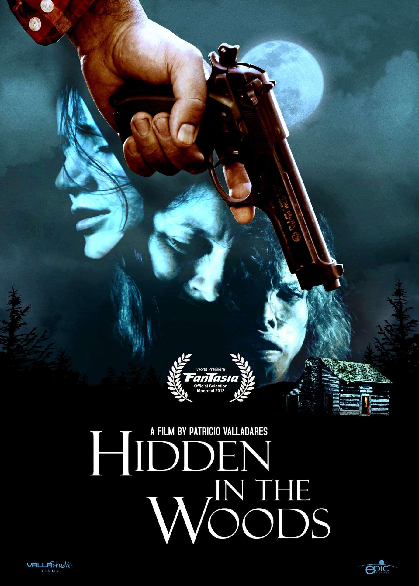 Hidden in the woods [VOSTFR] dvdrip